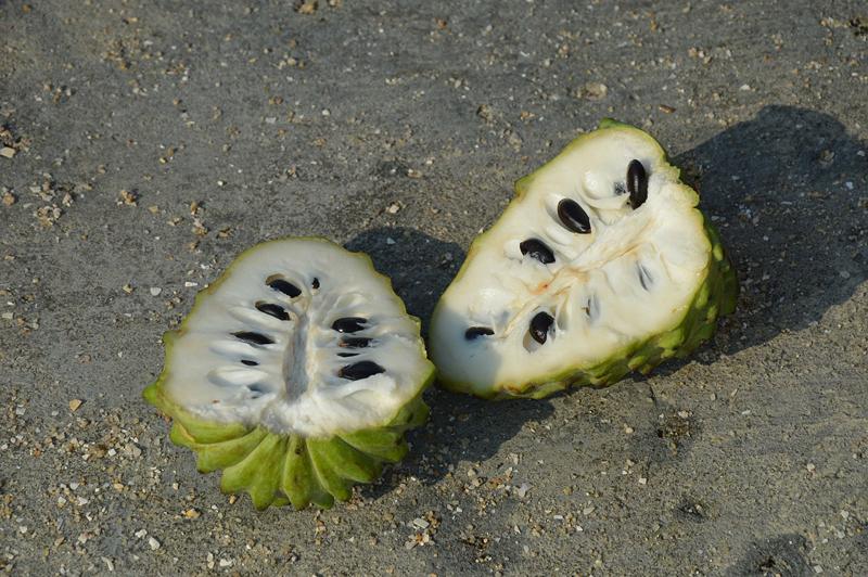Frutas de Temporada - Kitchen Academy - Blog - Chirimoya