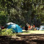 Colonias de verano en Alcobendas