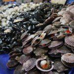 Contaminación Mariscos y Moluscos