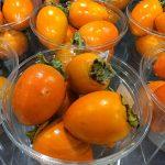 Frutas de temporada, Otoño
