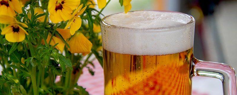 La cerveza - Kitchen Academy