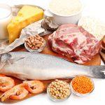 Proteínas – Por qué son importantes