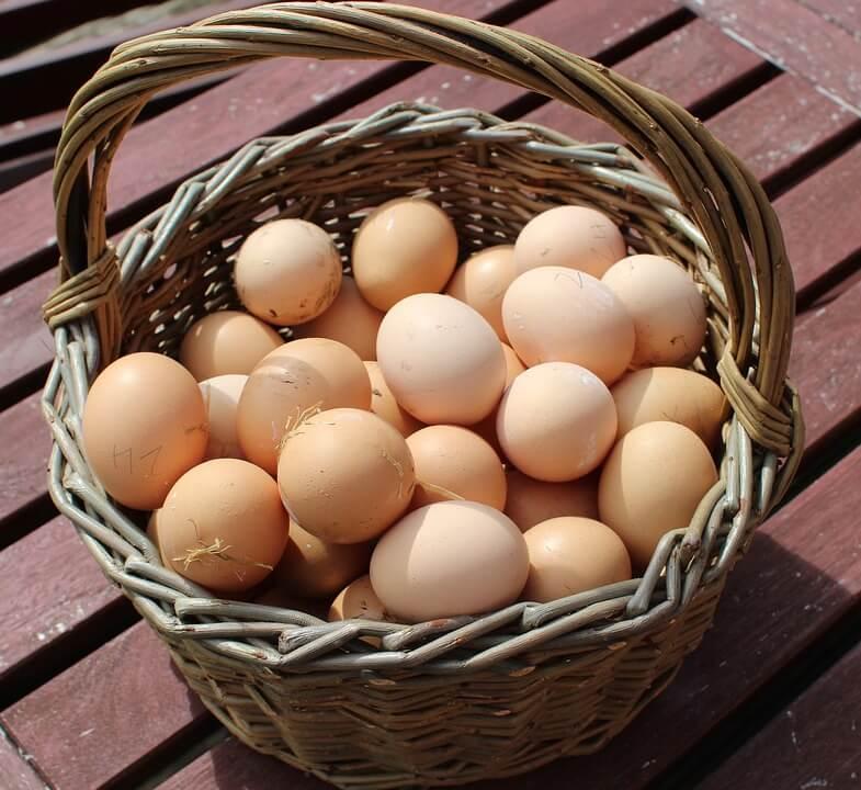 proteina del huevo