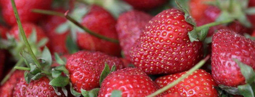 La importancia de enseñar buenos hábitos alimenticios